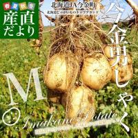 送料無料 北海道より産地直送 JA今金町のじゃがいも 今金男爵 Mサイズ 約10キロ 馬鈴薯 ジャガイモ 男爵 だんしゃく ダンシャク