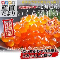 北海道より発送します。  名称 北海道産イクラ醤油漬け 内容量 200g×2パック 原産地 北海道産...