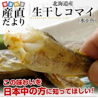 北海道から直送します。  名称:北海道産コマイ(氷下魚)の一夜干し(コマイ) 内容量:約1キロ(50...