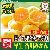 早生 香川みかん ミカン 5kg  瀬戸内産 甘みと酸味が絶妙 果汁たっぷり 送料無料