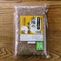 ★日々の食卓から健康に★  岡山県産ダイシモチ100%使用。 『山陽のもち麦』が新しく登場しました!...