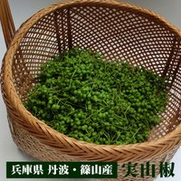 実山椒(生)を産地から直送いたします。 丹波産の山椒は香りが高いと好評いただいております。 ひと粒ひ...