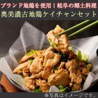 奥美濃古地鶏ケイチャンセット(G-KEI-A)(中部食産) 鶏ちゃん(けいちゃん)