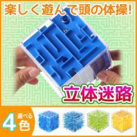 おもちゃ 立体 迷路 知育 玩具 安全 3D キューブ型 子供 脳トレ