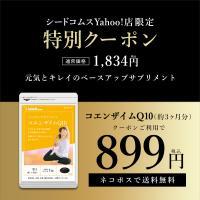 サプリ サプリメント コエンザイムQ10 約3ヵ月分 ダイエット