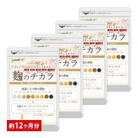 サプリ サプリメント 酵素 麹 麹のチカラ BIGサイズ約1年分  ビフィズス菌 モリンガ マカ アマランサス キヌア 大麦 玄米 あわ、ひえ、きび、たかきび