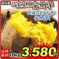 さつまいも 熊本産 安納芋(10kg)ご家庭用 高糖度 焼き芋 甘い サツマイモ 薩摩芋 野菜 国華園