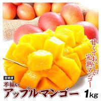早割 インターネット限定  宮崎産 ふぞろいマンゴー 1kg1組 ご家庭用