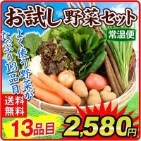 国産 お試し野菜セット 13種1箱 送料無料 葉物 根菜 野菜詰め合わせ 自宅へお届け 常温 国華園