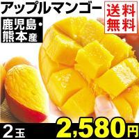 商品情報 濃厚な甘みの中に芳醇な香りがギュッと詰まった、熱帯果実の王様マンゴー。とろける舌触りと濃密...