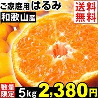 """商品情報     """"清見""""と""""ポンカン""""から生まれた極甘柑橘・はるみ。一粒一粒が大きく、弾けるような..."""