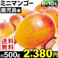 商品情報 甘みがギュッと凝縮した果肉は、小さくてもしっかり完熟果で大玉マンゴーにもまさる超濃厚な味わ...