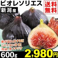 蜜が溢れ出すほどこの上ない甘さ! 商品情報     黒紫色の果皮に果肉の赤が鮮やかな「ビオレ・ソリエ...