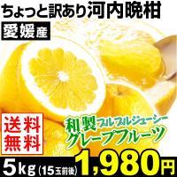 商品情報     「ジューシーオレンジ」「夏文旦」とも称されるみずみずしい柑橘・河内晩柑。グレープフ...