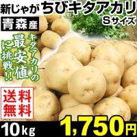 ジャガイモ 青森産 新じゃが ちびキタアカリ 10kg 1箱 送料無料 新物 栗じゃが 小玉【数量限定】