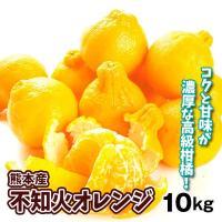 みかん 熊本産 不知火オレンジ(10kg)大特価 ご家庭用 数量限定 デコポンと同品種 しらぬい デコ 蜜柑 柑橘 フルーツ 果物 食品 国華園
