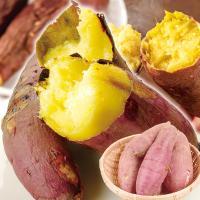 さつまいも 熊本産 紅はるか(10kg)ご家庭用 サツマイモ べにはるか 焼き芋 甘い 蜜芋 薩摩芋 野菜 国華園