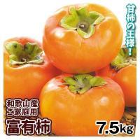 柿 かき 和歌山産 富有柿(7.5kg)ご家庭用 大特価 ふゆうがき 特別価格 数量限定 果物 フルーツ 食品 国華園