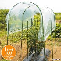 降雨が苦手なトマトやナスから、疫病の原因になる雨水の付着を防ぎます。幼少の頃から雨よけハウスを使用す...