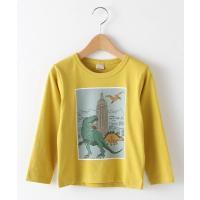petit main / プティマイン ボックス恐竜プリントTシャツ
