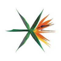 EXO / THE WAR (4集) (KOREAN VER.)  [ EXO ] 《韓国からご自宅...