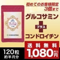 【初めてのお客様限定】【世田谷自然食品公式】グルコサミン+コンドロイチン約半月分(120粒入)[1家族様1回限り3個まで購入可]