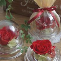 枯れないお花、プリザーブドフラワーのバラを使用した可愛い手のひらサイズのアレンジです。 こぶりで、ど...