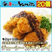 かきフライ  内容:250g(25g×10個)×2パック 原材料名:かき(広島県産)、衣(パン粉、で...