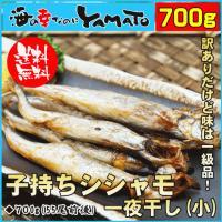 ●冷凍または半解凍で調理可能! 焼くだけで焼きシシャモの完成!  ⇒原料:からふとししゃも(アイスラ...
