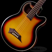驚きの価格!Warwick(ワーウィック)流5弦アコースティック・ベース!   本家ドイツ製のルック...