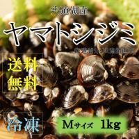 島根県 宍道湖産 シジミ漁師が獲りたてのシジミをお届けします。  Mサイズ 宍道湖産は濃厚なダシが出...