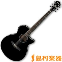 [Spruce top Mahogany back & sides] ○概要 ステージ上で立...