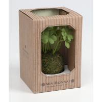 Kishima キシマ 和盆栽 苔玉 消臭 アーティフィシャルグリーン シロツメクサ KH-61059 KH-61059