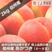 商品番号:toyo-akatuki02a 商品名 :信州 中野 山ノ内 産地直送 あかつき 6〜8玉...