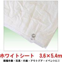 用途は様々!軽量で薄手タイプです。 養生や目隠し・雨・風からの保護によく使われます。 アウトドアや行...