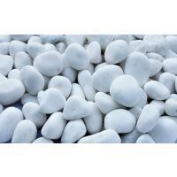大理石の白玉砂利で白さが際立っており、水洗いをしており表面が綺麗で高級感があります。 明るい砂利です...