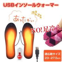 USB グッズ インソール ウォーマー 給電 電熱 足元 ヒーター 靴 中敷き あったか オフィス 事務 冷え防止 防寒 寒さ対策 ALW-ZHL-1215 ポイント消化