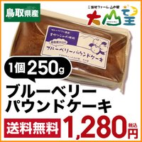 商品説明 ブルーベリーパウンドケーキ   ■名称 (常温)        ■内容量   250g  ...