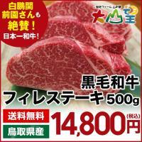 【商品説明】  ■名称 鳥取和牛ヒレ 2〜3枚入 500g(冷蔵)   ■内容量 500g   ■配...
