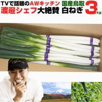 送料無料 鳥取県産朝どれ 白ネギ 3kg 長ネギ ねぎ ネギ 鳥取 大山 野菜