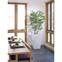 観葉植物 造花 大型 室内 人工観葉植物 消臭 抗菌 光触媒 ゴールデンツリー180cm  個別送料 人工樹木 フェイクグリーン