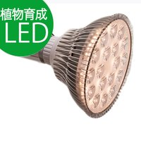 <p> 【 内容 】 植物育成用ライト電球(※照明器具は付属しません) 【 口径 】  ...
