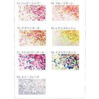 ◆ミックスカラー:約1.5g入、:各コンテナ6〜7分目程度 ●ラメ・ホログラムサイズ(約)・・・細切...