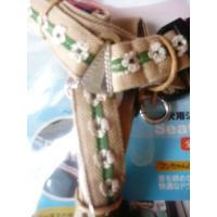 ecololo犬用シートベルト 〜25Kg shopping-hers 06