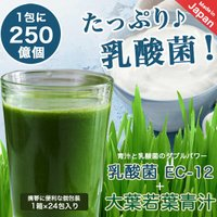 青汁 乳酸菌250億個含有 500ポイント消化 大麦若葉青汁 大葉若葉 置き換えダイエット 3g×24本入 オープン記念 セール 送料無料