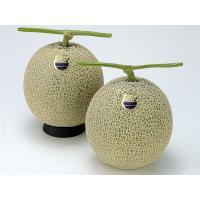 【7月上旬から発送を開始します】 香り豊かな富良野メロンは、北海道富良野地域で生産される、日持ちに優...