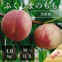 福島の桃、一番有名な「暁(あかつき)」系統の桃の予約販売です。 桃が美味しく熟したタイミングで朝取り...