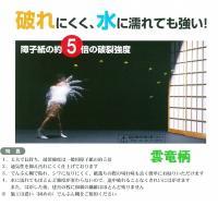 破れにくい強化障子紙 タフトップ 30m雲竜(白)
