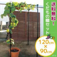 キウイやブドウの棚としてご使用いただけるフルーツ栽培セットです。  お庭の一角や、地ばい栽培ができな...