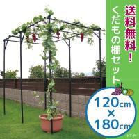 キウイやブドウの棚としてご使用いただけるフルーツ栽培セットです。 お庭の一角や、地ばい栽培ができない...